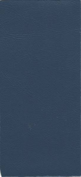 25V Blue
